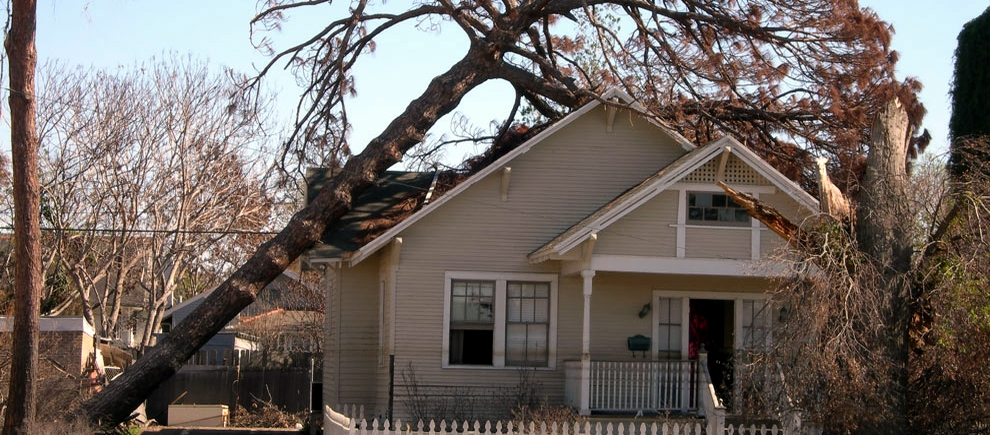 tree fallen on a home in alabama